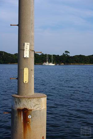 海から生えた電柱 佐久島