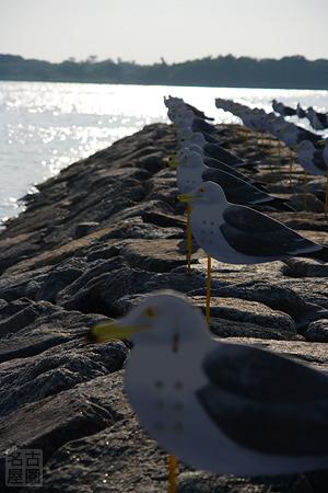 カモメの駐車場 佐久島
