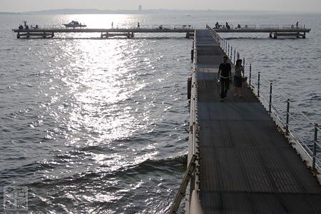 大島の海釣りセンター 佐久島