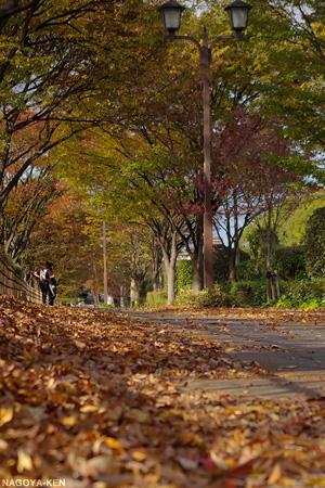 落ち葉が積もる名城公園の歩道