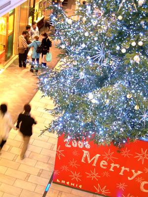 ラシックのクリスマスツリー