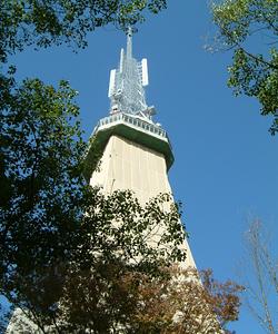 覆われた名古屋テレビ塔