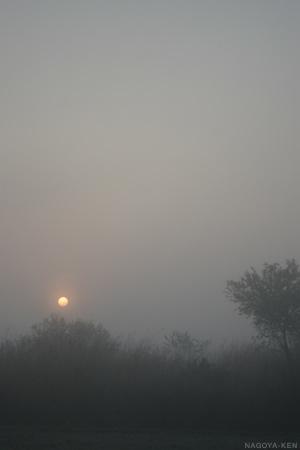 霧の中に日が昇る
