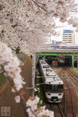 正木橋からみるJRと桜