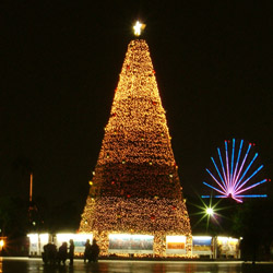 名古屋港 スターライトレビュー2005 スターライトイルミネーション