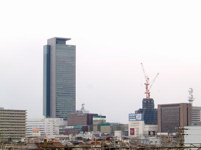 2007年3月8日