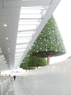 タワーズテラスから見たクリスマスツリー
