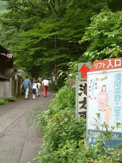 養老の滝へ続く道